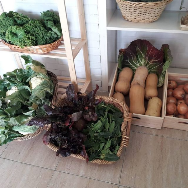 Cestas de verdura ecológica en Madrid